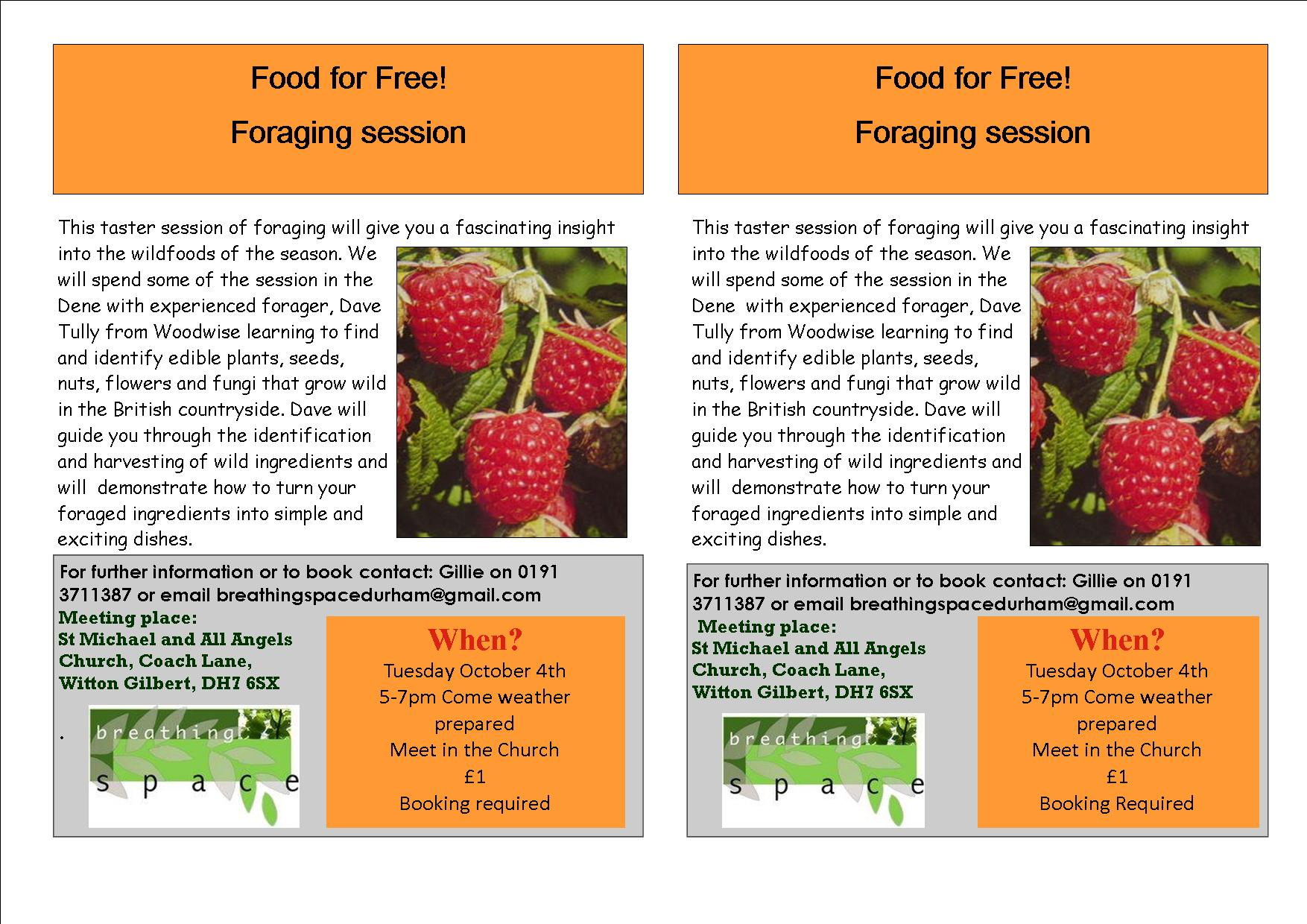 Food For Free Foraging In The Dene Breathing Space